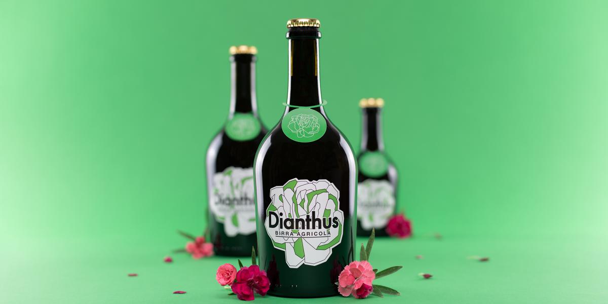 AgribirrificioBirr'è_Dianthus trio fiori